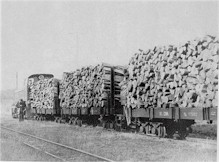 Lyd2 heads a loaded freight train